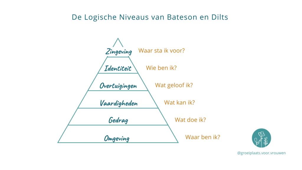 De Logische Niveaus van Bateson en Dilts